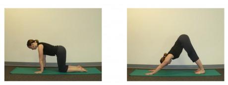 yoga_poses_1a
